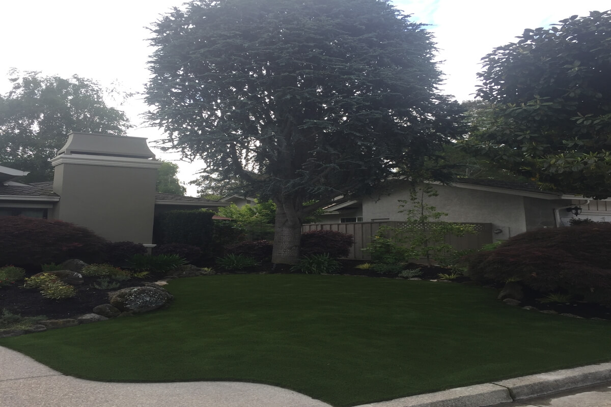 landscaping | Bay Area Greenscapes